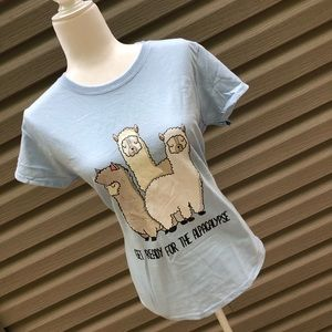 Alpaca T-shirt Baby Blue size medium